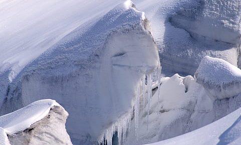 Une bactérie des glaciers Suisses à l'honneur.