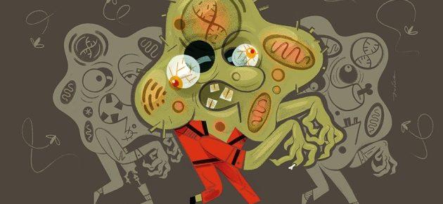 Les cellules zombies.